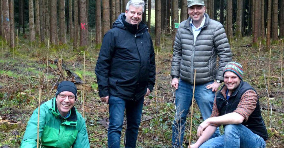 2400 Bäume für Schongau