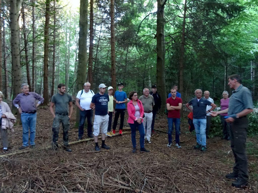 Waldspaziergang mit Stadtförster Klaus Thien